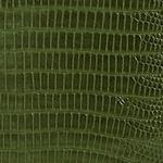Antigua Chameleon
