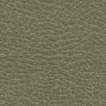 Brisa Distressed Prairie