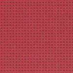 Expo Raspberry